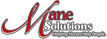 Mane Solutions Therapeutic Riding Program