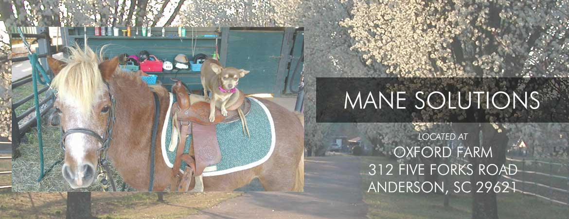 Mane Solutions at Oxford Farm 321 five forks road anderson sc 29621